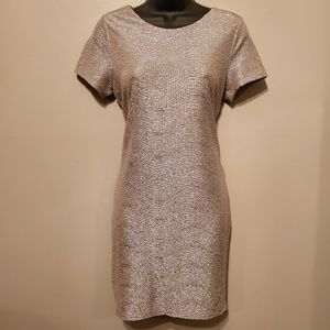 Champagne Gold and Silver Textured Dress by Sage